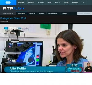 RTP1, Portugal em Direto